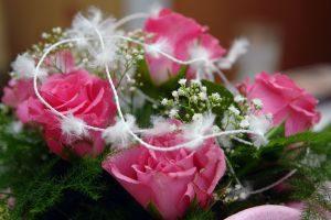 roze z piorkami
